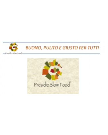 Presidio Slow Food FRISINA, 3 x 5 Liter Bag in Box